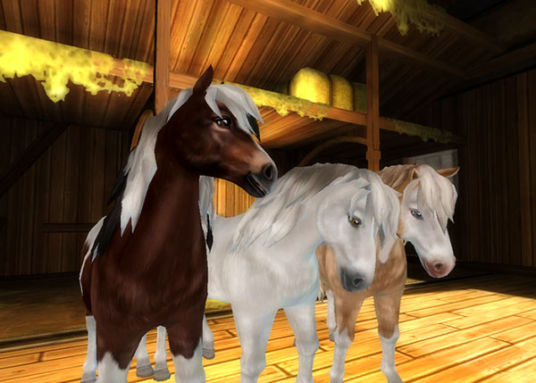 star stable info